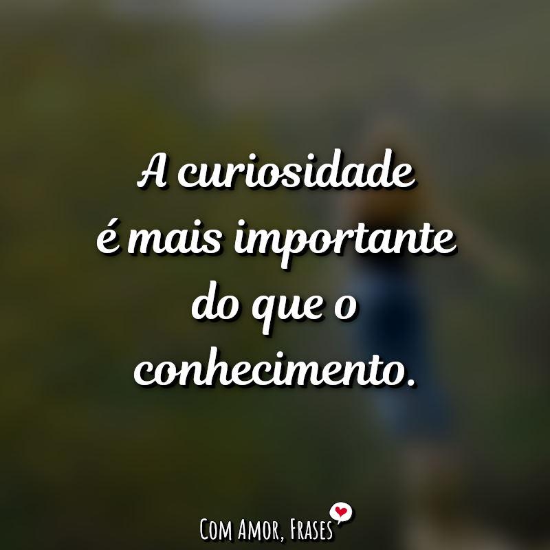 Frase do Dia: A curiosidade é mais.